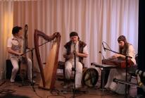 2014-02-14_cheljabinsk-_detskij_kontsert-arfoterapija_1